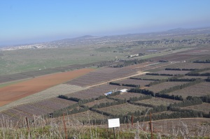 Golan Heights view of Syria