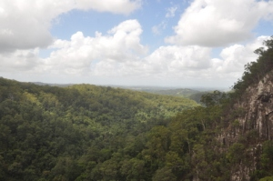 View of the ocean from the top of Minyon Falls