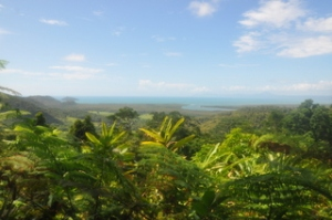 The view of the coast from the Daintree National Park