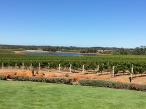 Watershed Winery in Margaret River