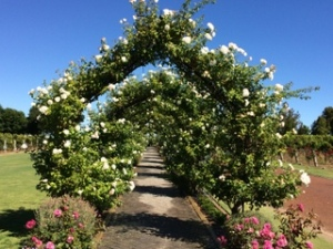 Amazing gardens at Voyager winery