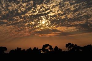 Carlsbad Sky